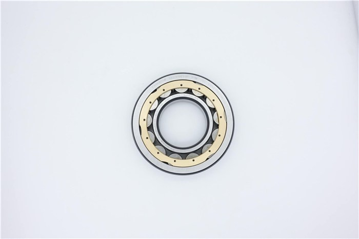 INA RNAO45X62X40-ZW-ASR1 Needle bearings